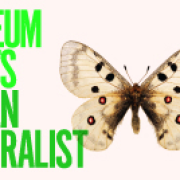 Museum Meets Urban Naturalist at The Manchester Museum