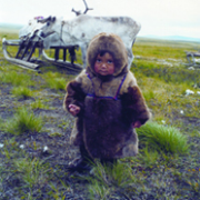 A future owner of the tundra Nenets c Lyudmila Lipatova
