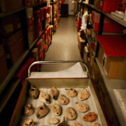 One of The Manchester Museum's behind-the-scenes stores
